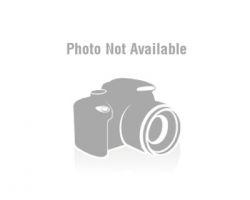 Wavy platinum blonde tail